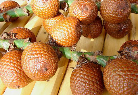 All About Buriti Oil