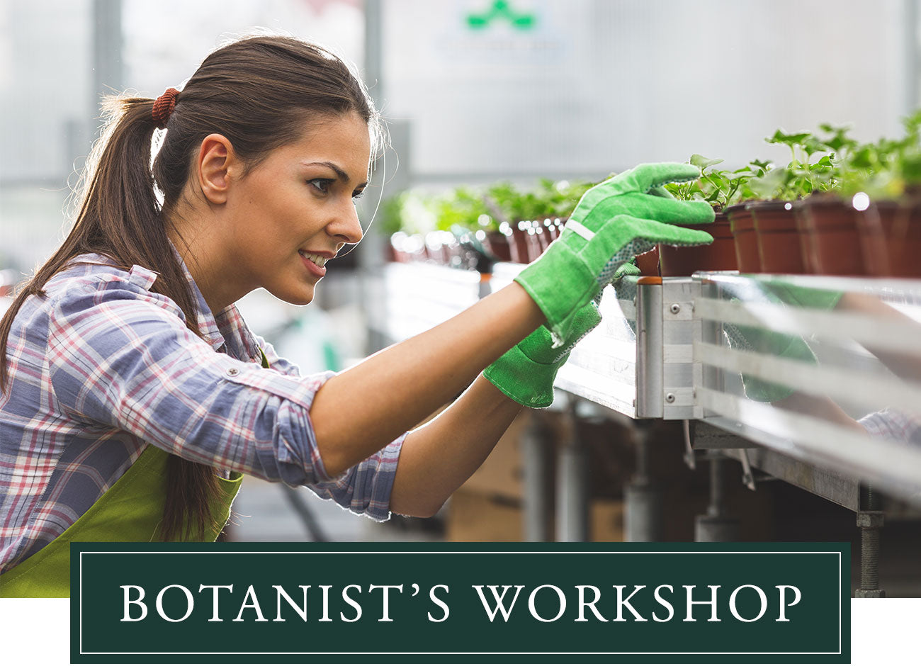 Botanist Workshop