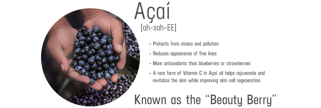 acai ingredient information and benefits