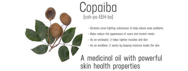 copaiba ingredient information and benefits for skin