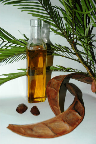 pracaxi oil in glass bottle with seeds and leafy accents