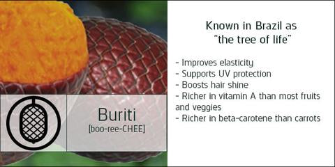 buriti ingredient information and benefits