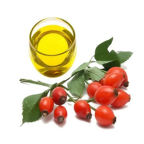 rosehip fruit on a branch with a glass of skincare oil