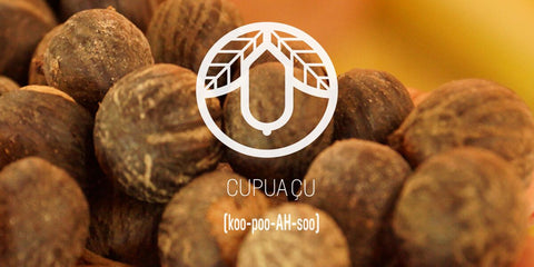 cupuaçu seeds ingredient feature image with pronunciation