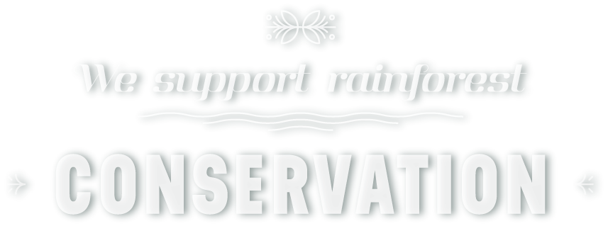 We strongly believe in rainforest conservation