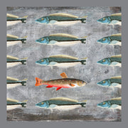 One Red Fish Pillow By Persnickety Design front