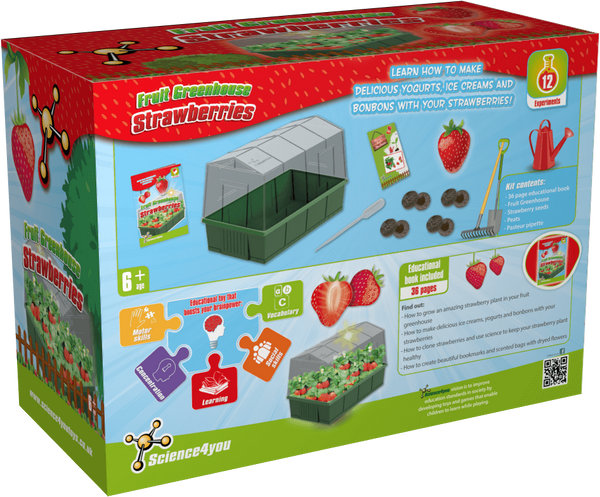 Strawberries Greenhouse Educational Kit back side