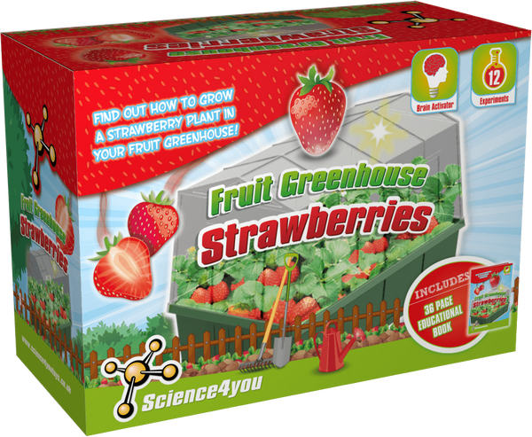 Fruit Greenhouse Strawberries | Educational Ecology Toy | STEM