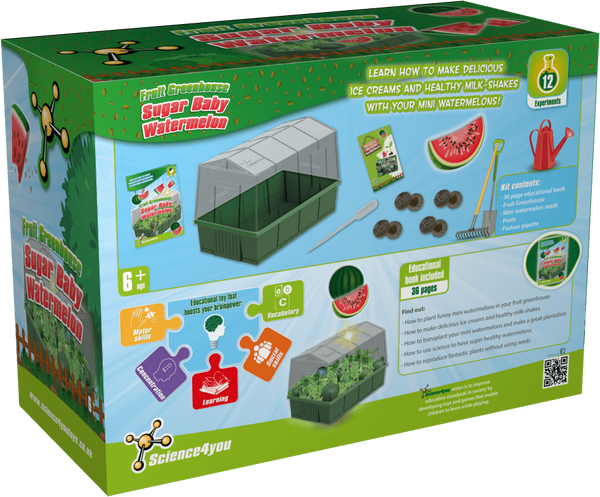 Sugar Baby Watermelons Greenhouse Educational Kit back side