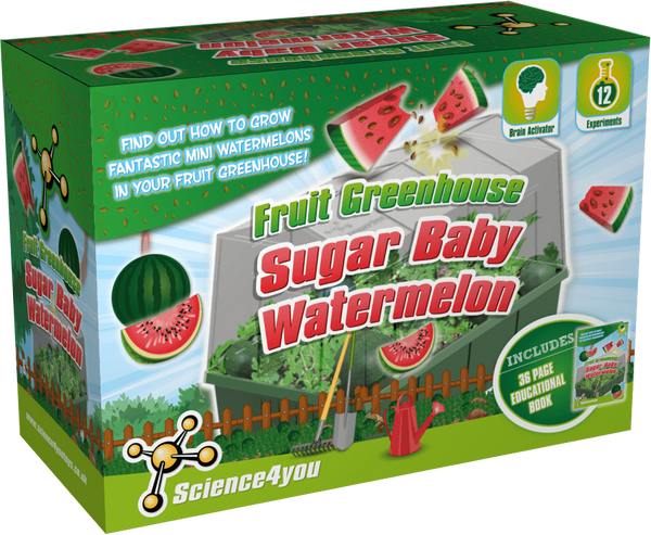 Sugar Baby Watermelons Greenhouse Educational Kit font side