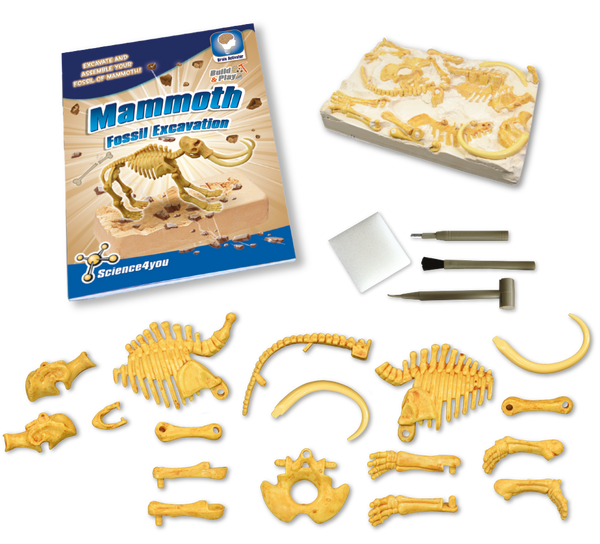 Fossil Excavation Mammoth Educational Toy content