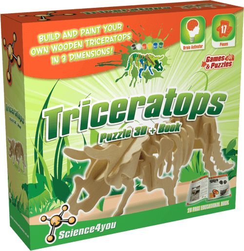 3D Wooden Triceratops Puzzle Kit front side
