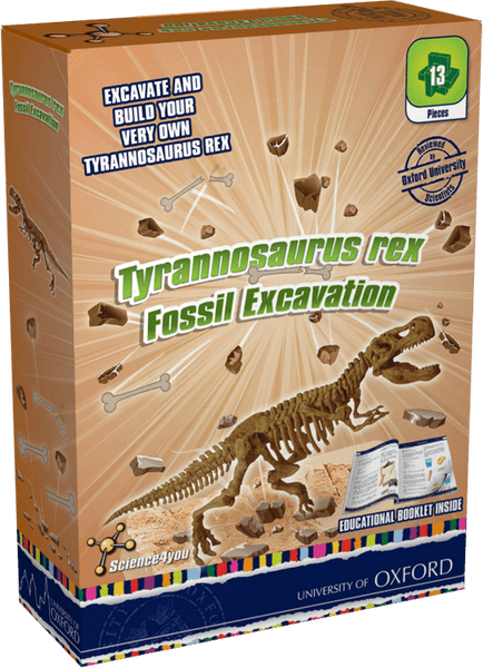 Tyrannosaurus Rex Fossil Excavation: University of Oxford Edition