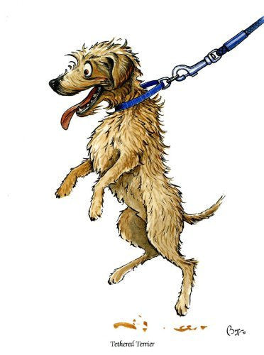 Tethered Terrier Greeting Card by Bryn Parry