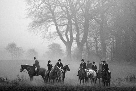 "Fox hunting greeting card. ""Goodnight"". Photograph by Charles Sainsbury-Plaice. Taken at the Heythrop. Large size, A5 with envelope. Blank on the inside for any occasion."