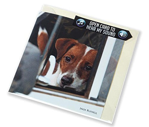 Jack Russell greeting card with sound inside. Plays authentic yapping noise when opened. Perfect gift or birthday idea for terrier lovers