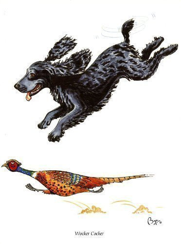 """Wocker Cocker"" Spaniel dog greeting card by Bryn Parry. Iconic cartoon image of dog chasing pheasant."