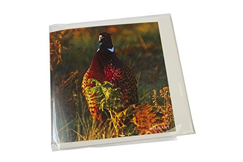Cock pheasant greeting card with sound.