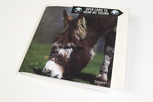 Donkey greeting card with sound inside.