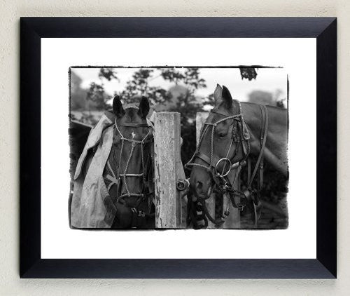 """Between Chukkas"" signed limited edition photographic polo print by Charles Sainsbury-Plaice"