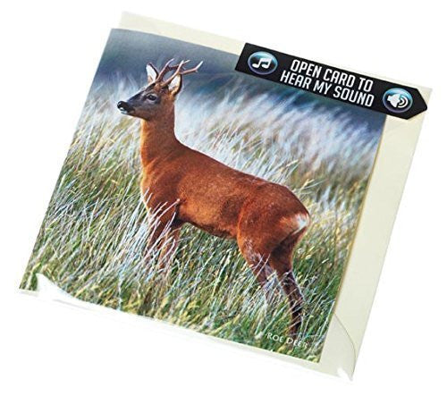 Roe Deer or Roe buck greeting card with sound. Plays real barking noise of a roebuck. Perfect to go with shooting gift