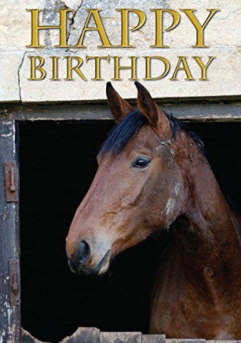 Resting Hunter Horse Birthday Card by Charles Sainsbury-Plaice