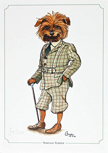 """Norfolk Terrier"" dog and hunting themed, cartoon, limited edition and signed original print by Bryn Parry. Perfect gift for the downstairs loo, study, kitchen etc. Limited run of 850 only and signed and numbered by the artist."