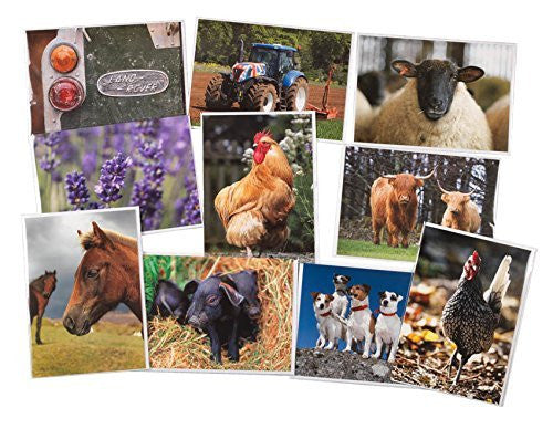 10 Large Countryside Greeting Card collection with envelopes. Blank on the inside for all occasions