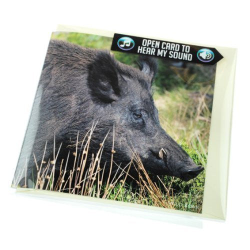 Wild boar greeting card with sound. Plays real boar noise when opened. Perfect to go with shooting gift