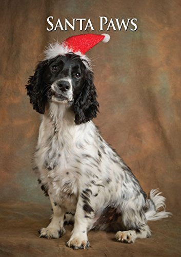 Working Cocker Spaniel Dog Christmas Card