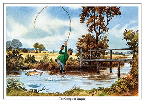 fly fishing and trout cartoon greeting card by Thelwell