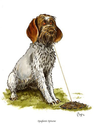 """Spaghetti Spinone"" Italian working dog greeting card by Bryn Parry. Iconic cartoon. Blank on the inside for lots of words and any occasion."