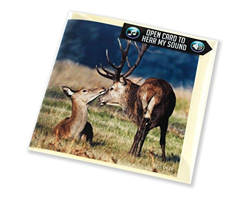 Red Deer greeting card with sound