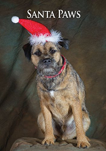 Border Terrier Dog Christmas Card by Charles Sainsbury-Plaice. Large A5 size with envelope.