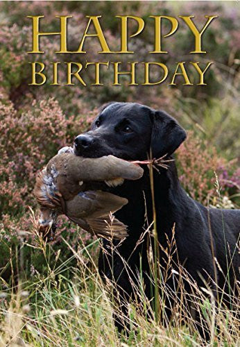 Labrador Birthday Card. Labrador retriever with partridge - perfect for people who like shooting and field sports. By Charles Sainsbury-Plaice