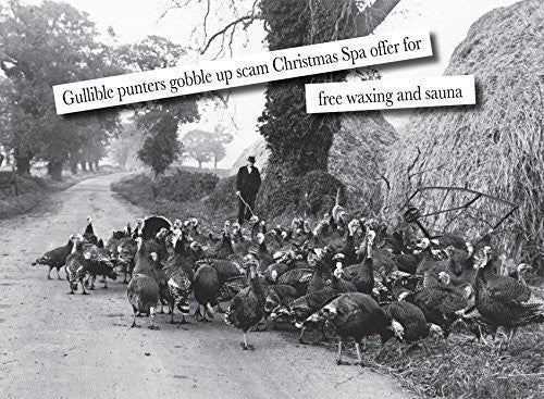 """Norfolk Bronze Turkeys"". Humorous vintage greeting card with funny caption. Blank on the inside perfect for any occasion. Large A5 size with envelope. Caption reads ""Gullible punters gobble up Christmas Spa Scam Offer for free waxing and sauna"""