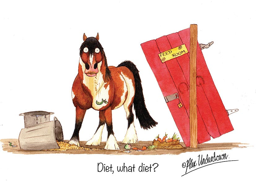 "Horse greeting card ""Diet, what diet"" by Alex Underdown."