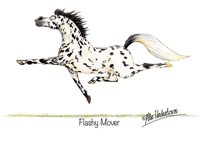 "Horse greeting card ""Flashy Mover"" by Alex Underdown."