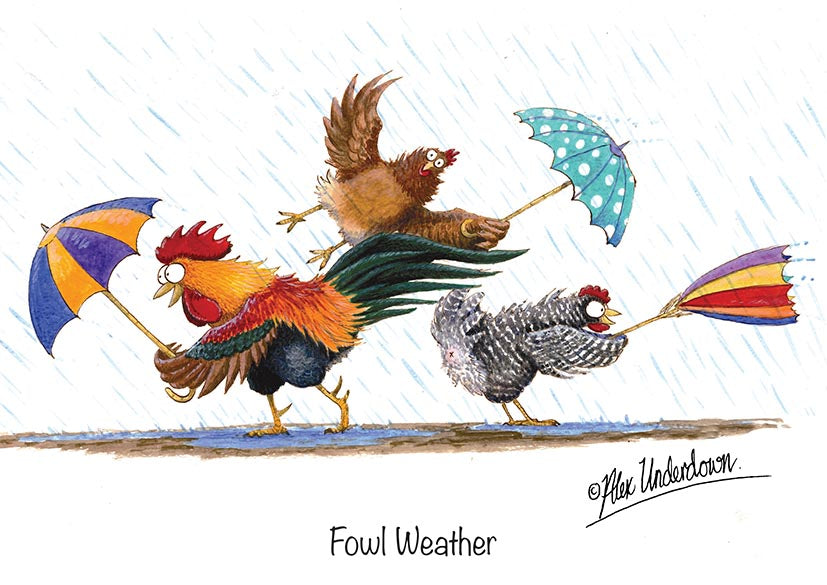 "Chicken greeting card ""Fowl Weather"" by Alex Underdown."