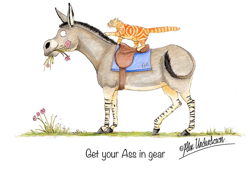 "Donkey greeting card ""Get your ass in gear"" by Alex Underdown."
