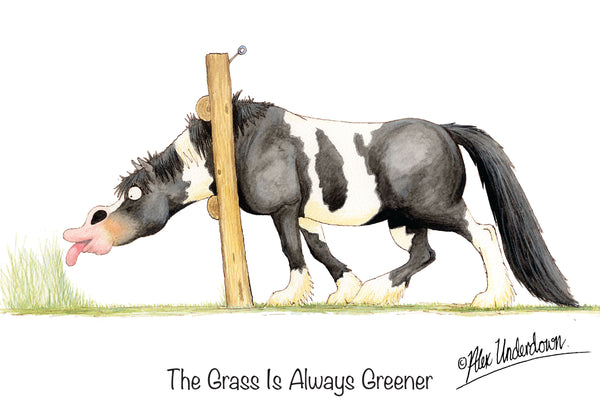 "Horse greeting card ""The Grass is always greener"" by Alex Underdown."
