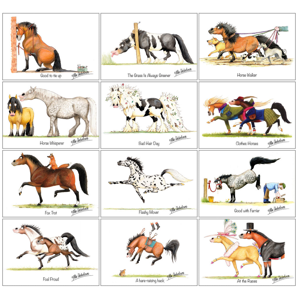 12 assorted horse cartoon greeting cards by Alex Underdown