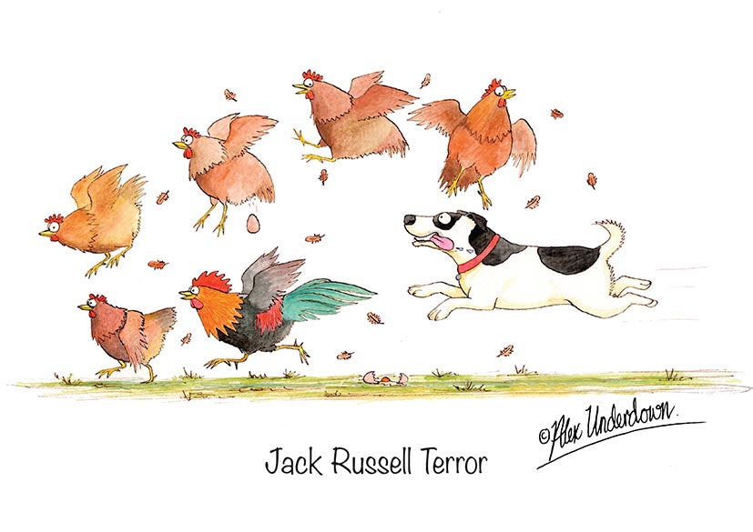 "Dog and Chicken greeting card ""Jack Russell Terror"" by Alex Underdown."