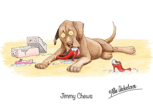 "Dog greeting card ""Jimmy Chews"" by Alex Underdown."