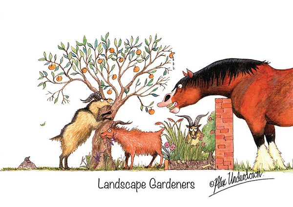 "Horse and Goat greeting card ""Landscape Gardeners"" by Alex Underdown."