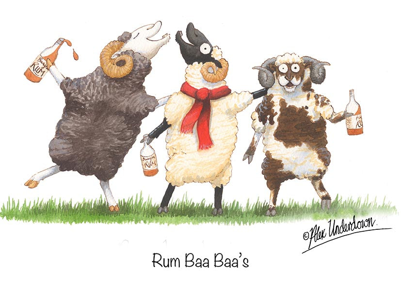 "Sheep greeting card ""Rum Baa Baa's"" by Alex Underdown."
