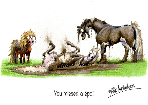 "Horse greeting card ""You missed a spot"" by Alex Underdown."