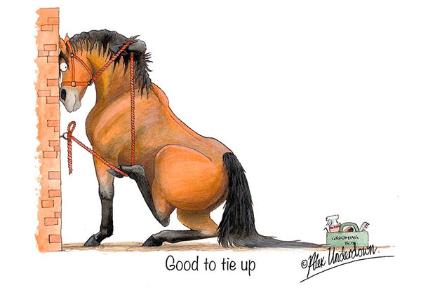 "Horse greeting card ""Good to tie up"" by Alex Underdown."
