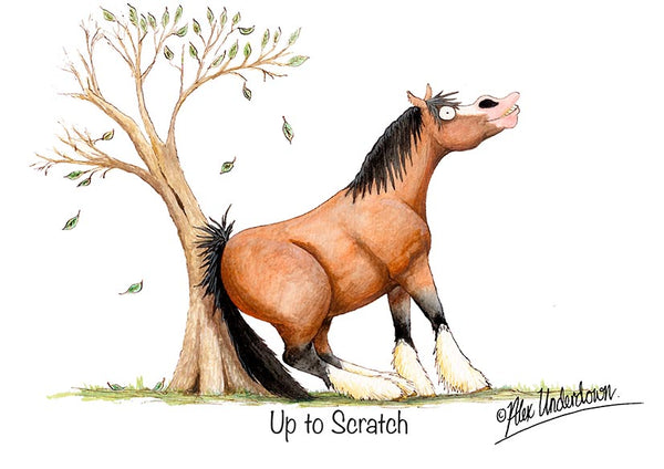 "Horse greeting card ""Up to scratch"" by Alex Underdown."