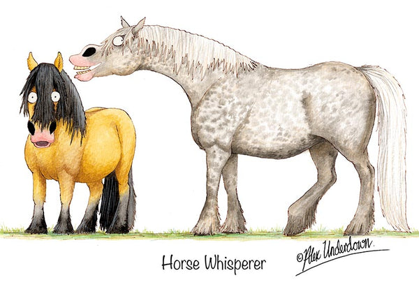 Horse Whisperer cartoon greeting card by Alex Underdown